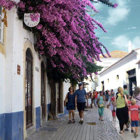 Silver Coast Travelling, Rua de Obidos, Óbidos Medieval Tour